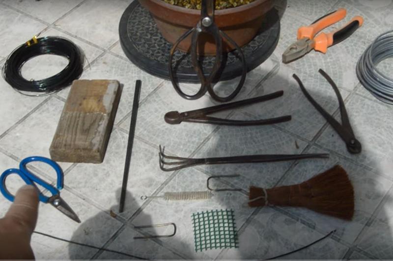 Инструменты для пересадки